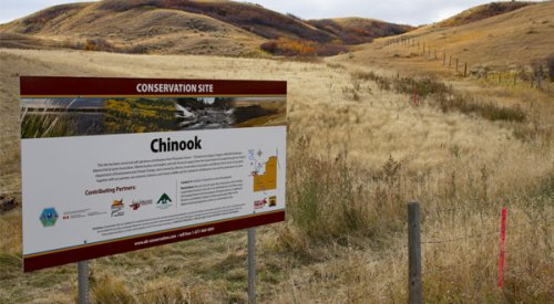 Chinook Conservation Site featured image