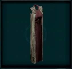 Cloaked Dress