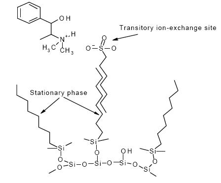 ion exchange sites