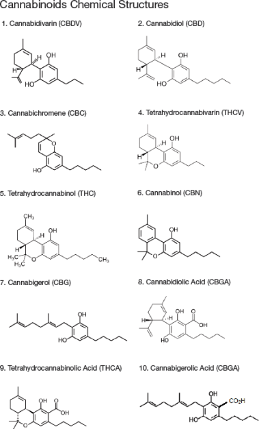 Seperation and Extraction of THC, Cannabinoids from Marijuana