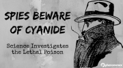 The Science of Cyanide