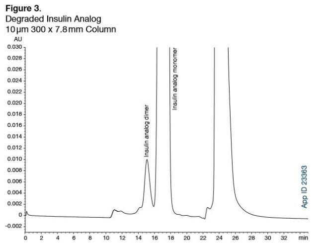insulin fibrils