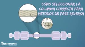 Seleccione la Columna Correcta Para su Método de Fase Reversa