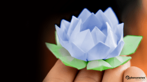 Lotus Flower Origami Challenge – Bring Zen Into Your Lab
