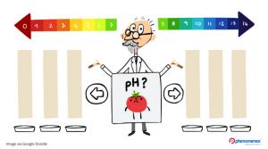 Google Honors Danish Biochemist Responsible for the pH Scale – SPL Sørensen