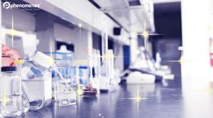 ¿Le da alegría su mesa de trabajo en el laboratorio? Marie Kondo puede ayudar