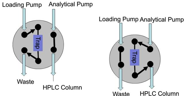 Forward Elute on a Micro LC Column