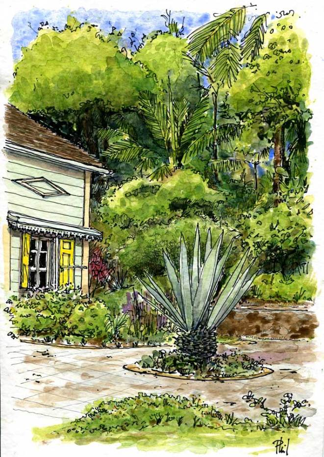 Dessin aquarellé de l'office du tourisme de l'Entre-Deux, Ile de la Réunion.
