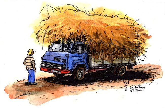 Sketch of a truck carrying sugar canes.