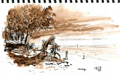 Sketch of the Ermitage lagoon, Reunion Island