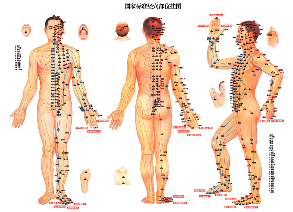 Acupuncture for internal diseases