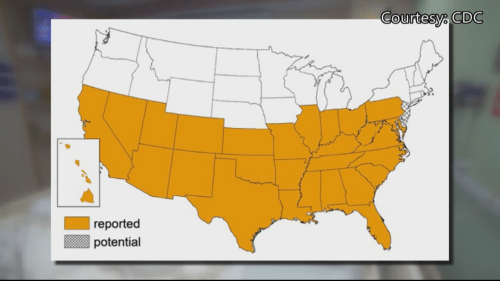 small resolution of disease carrying kissing bug has made its way north including pennsylvania delaware cdc warns