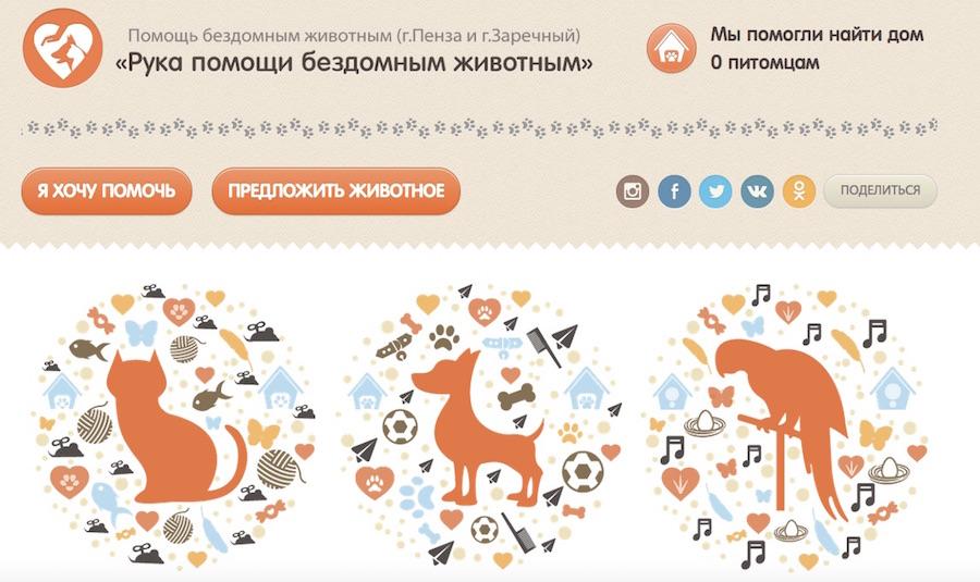 Веб-приложение поможет уличным животным найти дом
