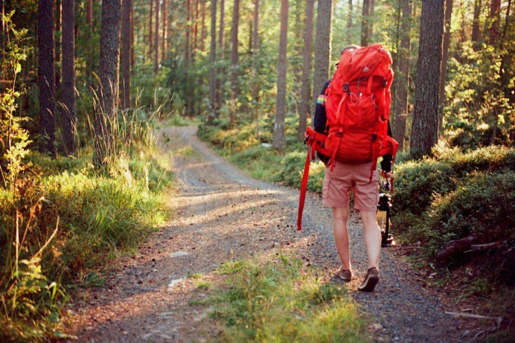 «Этой осенью в лесу» — осенний поход актива ЦТ «Лосиноостровский»