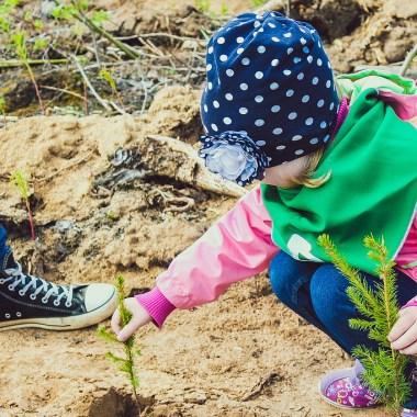 Зеленая книга: как движение ЭКА делает экологичность доступной каждому