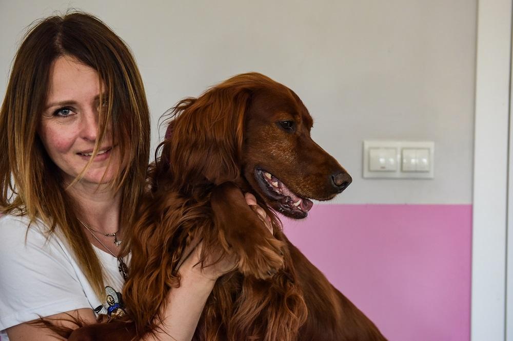 В Таганроге отобрали собак-терапевтов в проект «Волонтер – это звучит гордо!»