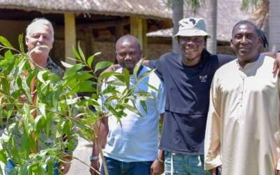 Royal Senchi plants trees to support Green Ghana Project, features Stonebwoy, Dentaa Amoabeng