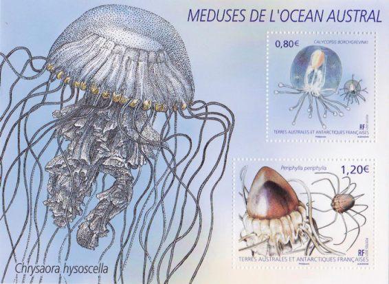 COLLECTION-2021-BLOC-MEDUSES-DE-LOCEAN-AUSTRAL