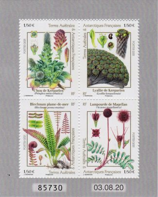 COLLECTION-2021-FLORE