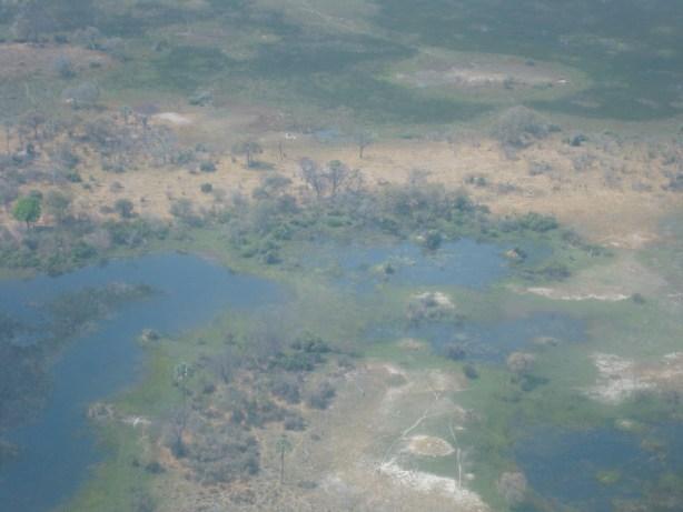 Okavango Delta landscape from air