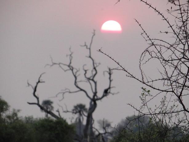 Sunset in the Okavango Delta of Botswana