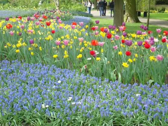 A visual palette of color and variety at Keukenhof Garden