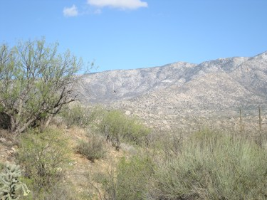 The view of the desert and mountains