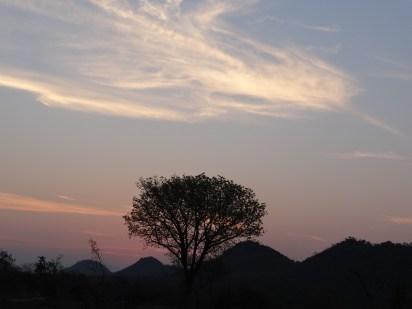 African sunset on safari Sabi Sands Kruger