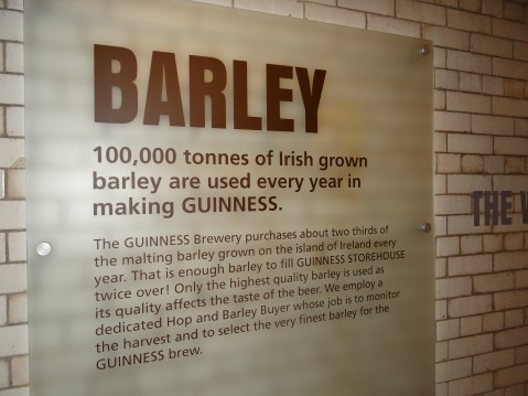 All about the Barley