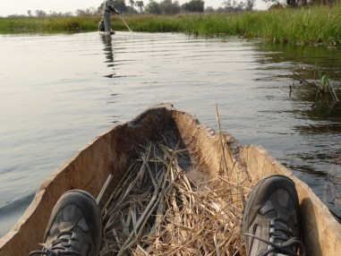 Mokoro view of Okavango Delta