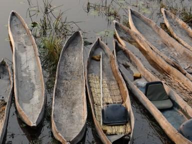 Mokoro boats at Oddballs' Camp