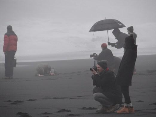 Black Sand Beach South Coast of Iceland GeoIceland tour