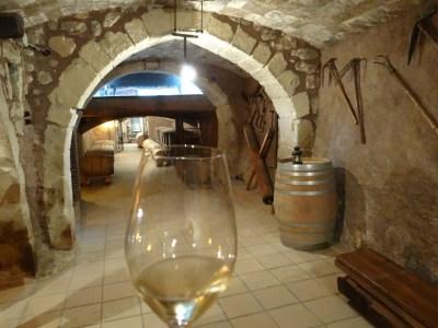 Llopart cava cellar tour