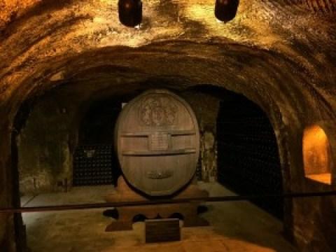 Moet & Chandon Cellar Tour and Tasting