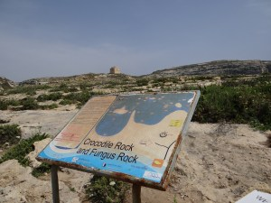 Crocodile and Fungus Rock Gozo Sign at The Azure Window
