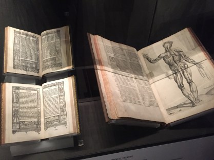 V&A Museum Books