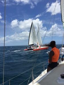 Barbados Catamaran Snorkeling
