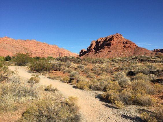 Snow Canyon Park Utah Red Mountain Desert calling