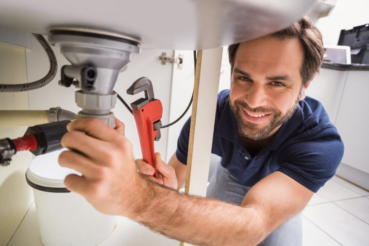 Salespeople can celebrate holidays like hug a plumber day