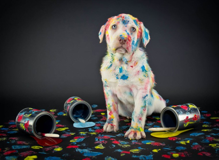New salespeople can make a mess