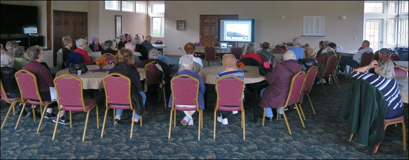 Ridgeview Highlands Senior Apartments Audience