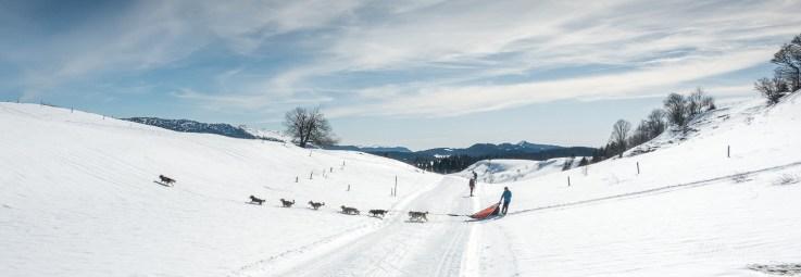 Musher dans le Jura sur la GTJ