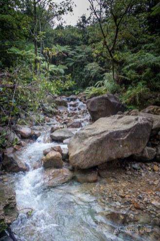 Rivière en montant au lac bouillant