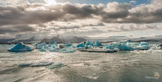 Les icebergs se regroupent et tournent à l'embouchure. Au fond, les glaciers d'où ils viennent !