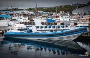 Un pneumatique semi-rigide d'une compagnie qui organise des sorties baleines.