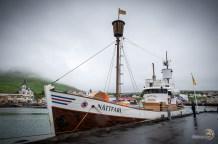 Un bateau pour voir les baleines