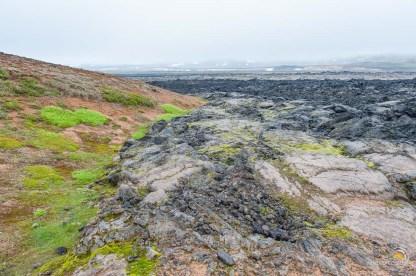 Islande-Hverarond_7272