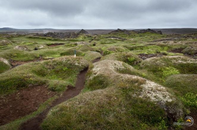 Le sentier se faufile dans ce dédale de verdure entre les zones plus tectoniques