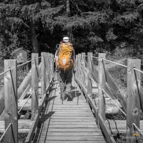 Le petit pont de bois de la Fouly