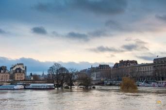 La pointe de l'île de la Cité au pied du pont Neuf est sous l'eau. Normalement, sous les arbres il y a un square, prisé des Parisiens